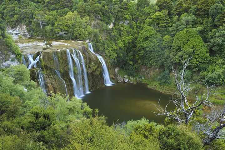 Waihi Falls Low Resolution.jpg